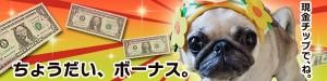 Chodai-bonus